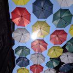 Image de profil de Umbrella ☂️